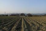 사가현 요시노가리(吉野ヶ里) 유적 부근의 마을…